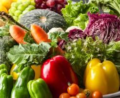 肌のハリ 食事 タンパク質 ビタミンC