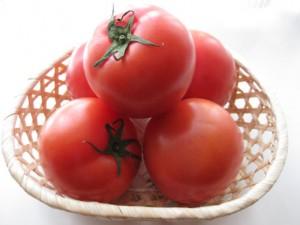 トマト ニキビ 効果的 リコピン